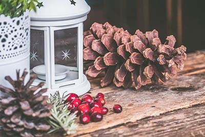 Изделия для декора сада, парка в магазине ПровансШоп